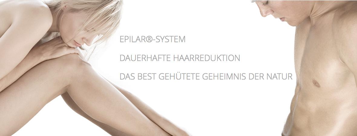 epilarsystem-slide